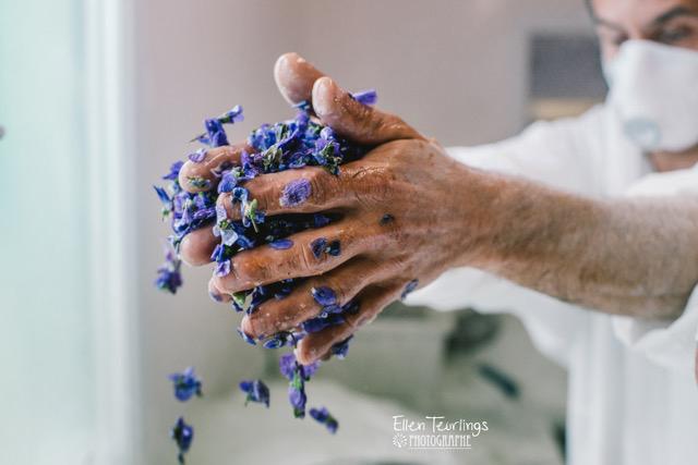 Culture de la Violette made in France | La Promenade