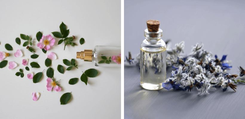 Fragrances et parfums La promenade