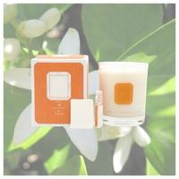 🇫🇷DANS LES ORANGERS EN FLEURS   La fleur d'oranger est une matière première très utilisée en parfumerie. Certaines personnes disent qu'elle vient du Maroc et de la Tunisie et d'autres pensent qu'elle vient de Chine ou de l'Inde. Son origine n'est pas certaine. Ce qui est sûr, c'est que sa senteur est très appréciée depuis l'Antiquité. A l'origine, elle servait d'ornement pour les couronnes de mariage.  En parfumerie, la fleur d'oranger a une senteur florale, cireuse, sucrée, poudrée et verte.  La fleur d'oranger a de nombreuses vertus et son odeur est connue pour être apaisante, relaxante.   🇬🇧IN THE ORANGE BLOSSOM   Orange blossom is a raw material widely used in perfumery. Some people say it comes from Morocco and Tunisia and others think it comes from China or India. Its origin is not certain. What is certain is that its scent has been highly valued since ancient times. Originally, it was used as an ornament for wedding crowns.  In perfumery, orange blossom has a floral, waxy, sweet, powdery and green scent.  Orange blossom has many virtues and its scent is known to be soothing and relaxing.   #orange #fleurdoranger #orangers #bigaradier #fleur #fleurs #bougie #bougieparfumee #madeinfrance #deco #home #lapromenadeparfums