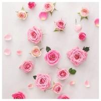 Alors, avez-vous trouvé le cadeau parfait pour votre moitié cette année ? 🌹  #saintvalentin #bougieparfumee #fragrance #madeinfrance #lapromenadeparfums #pinterest