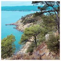 🇫🇷 BALADE COUP DE COEURAujourd'hui on vous présente un de nos clichés préféré lors d'une randonnée entre la plage de la Madrague et le port d'Alon 🐚 Ces petits coins de paradis dans le Sud de la France nous font rêver et nous inspirent… Une promenade qui sait ravir notre sens de la vue mais également celui de l'odorat !  Ça sent bon le sud…☀️  🇬🇧 FAVORITE WALK Today we present you one of our favorite shots during a walk between the Madrague beach and the port of Alon 🐚 These little corners of paradise in the South of France make us dream and inspire us... A walk that knows how to delight our sense of sight but also our sense of smell!  It smells good in the south…☀️  #calanque #sud #southoffrance #cotedazur #cotedazurfrance #plage #randonnée #lapromenadeparfums #promenade