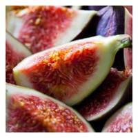 🇫🇷 Parfum figue, fruité, juteux et exquis ✨  Reconnue pour sa saveur depuis longtemps appréciée, la figue est aussi utilisée en parfumerie tout comme les feuilles du figuier et son bois 🍃  L'extraction d'une huile essentielle à partir du fruit étant impossible, son doux parfum est reproduit en laboratoire par le talent de chimistes des parfumeurs 💫  Retrouvez cette note sucrée et ensoleillée dans notre senteur Sous les figuiers 🌿