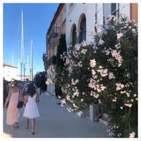 Promenade coup de cœur 🕊  Port Grimaud, notre Venise française ✨